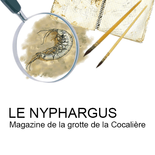 Le Nyphargus
